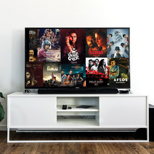Entertainment: A Guide for Binge Watchers