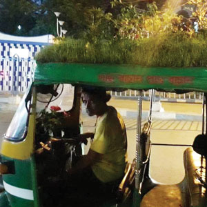 THE AUTO DRIVER AND HIS GARDEN