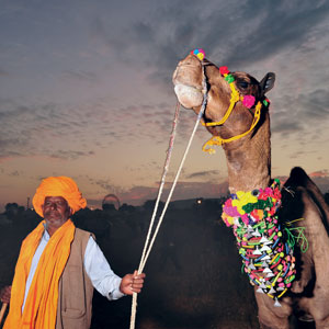 Journeys: A Passage to Pushkar