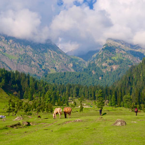 Travel: My Journey through Kashmir, the Misperceived Paradise of India