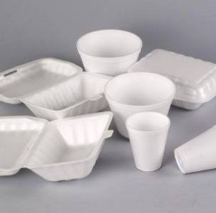Run for Sewa helps educate about styrofoam use