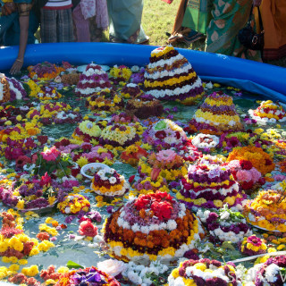 Telangana Community relives Bathukamma tradition