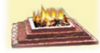 Havan by World Hindu Council of America & Ambaji USA Shree Shakti Mandir