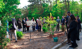 05_16_AT-Mercer_TreePlanting-at-PeaceGarden.jpg